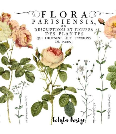 Transfer IOD Flora Parisiensis